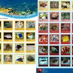 Fish Top Marine Aquarium Species