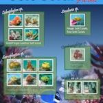 Soft Coral Farm